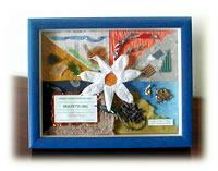 Premio Comuni Ricicloni 2001